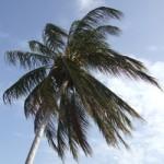 Belize en mer