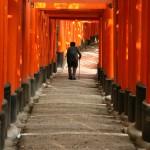 Toris de Nara